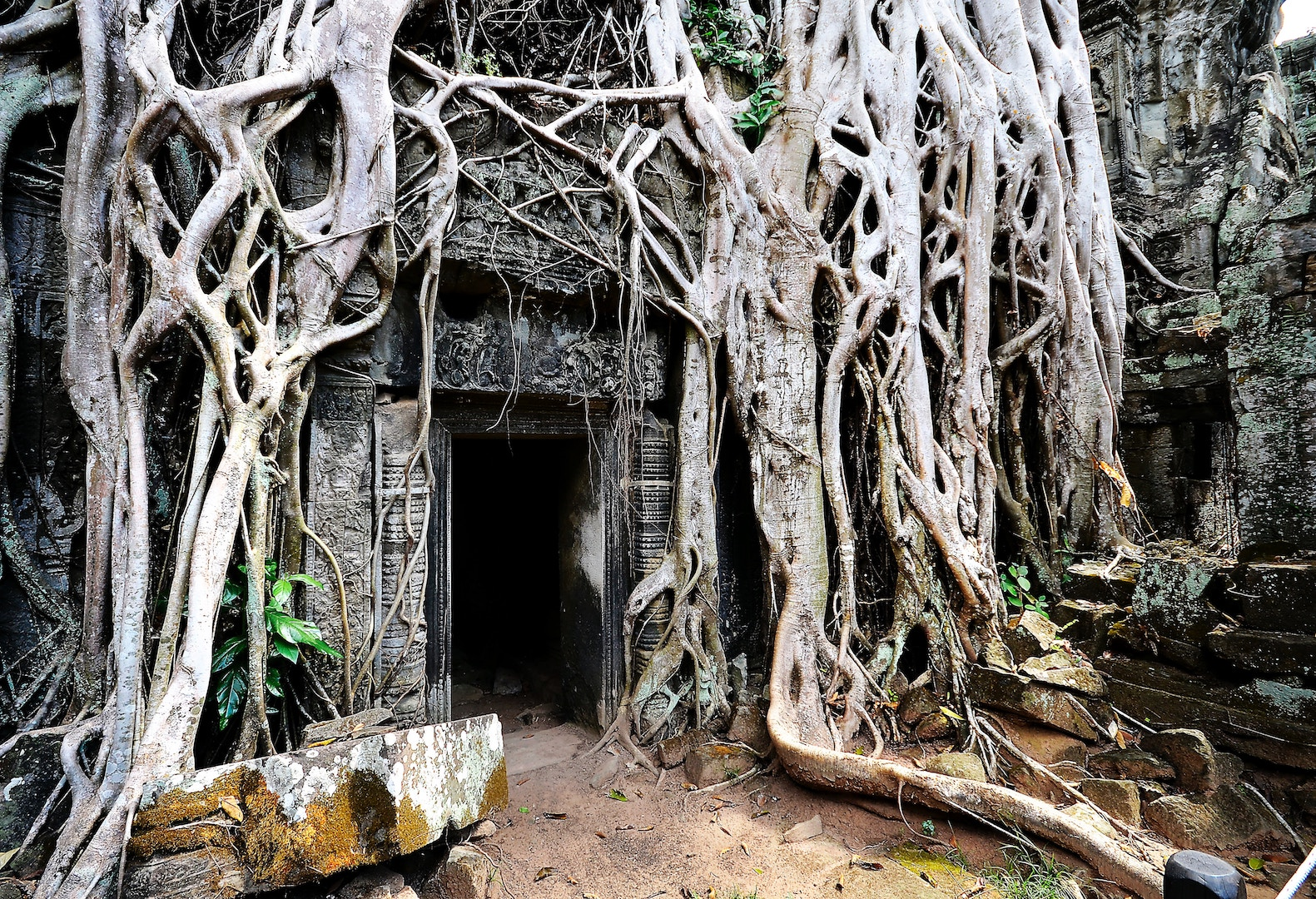 TOP THINGS TO DO IN SIEM REAP, CAMBODIA UNSPLASH