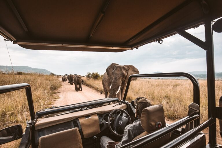 4 EXPERIENCES YOU SHOULDN'T MISS ON A SELF-DRIVE TOUR OF UGANDA